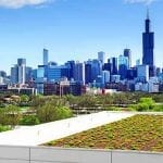 Roof garden in Chicago